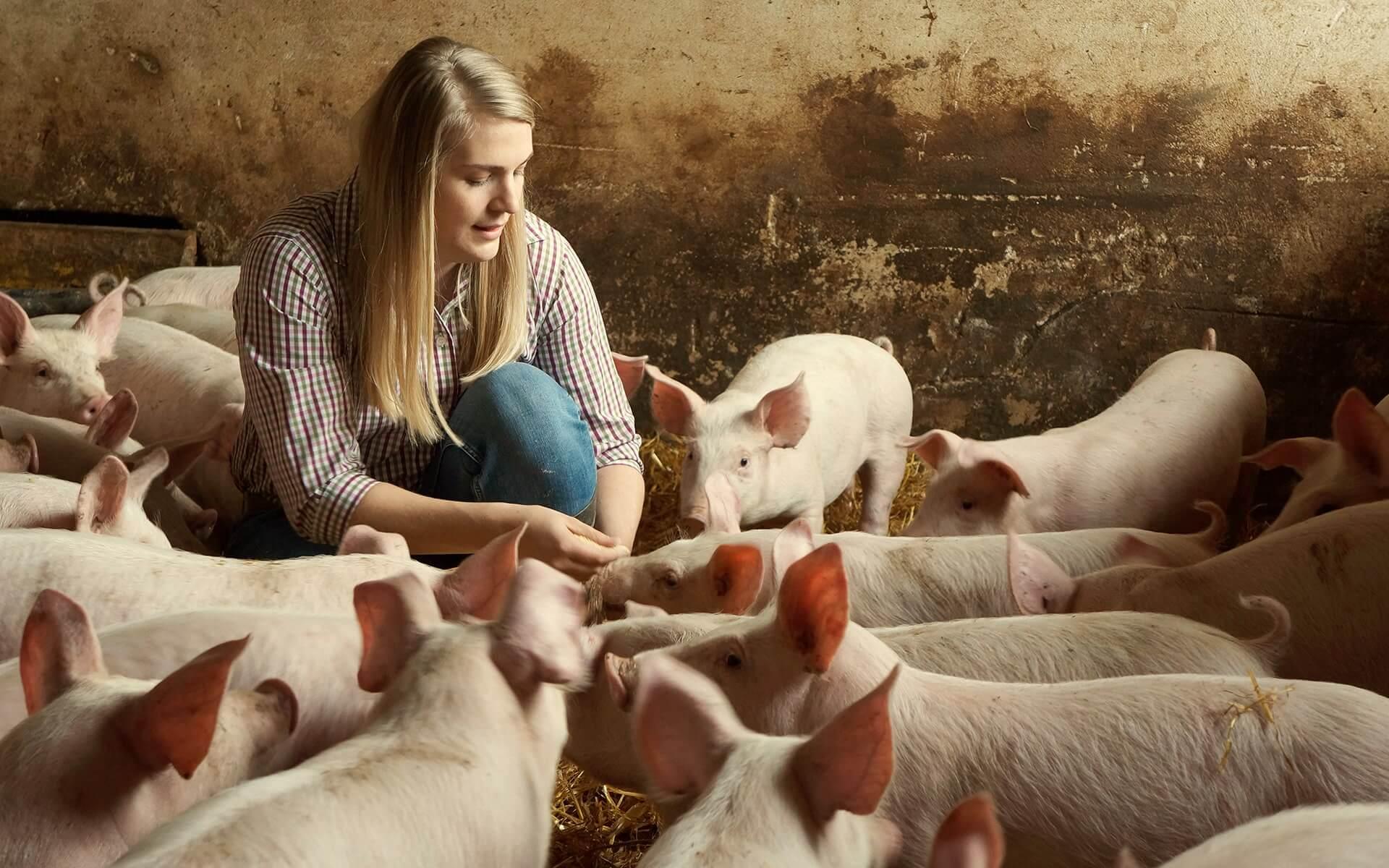 Lisa Jahner im Schweinestall